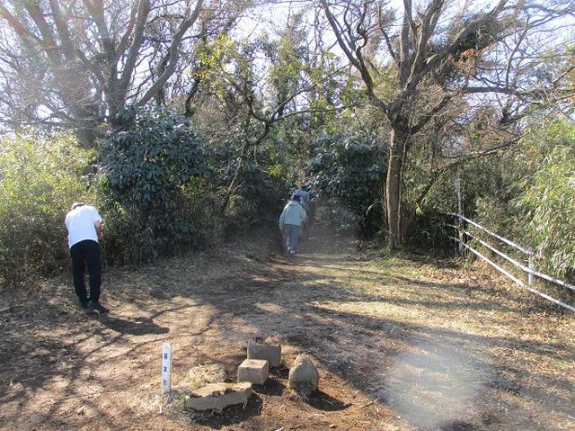 画像5: 2月2日、山旅会のツアーで 森戸川林道から二子山 にいってまいりました!