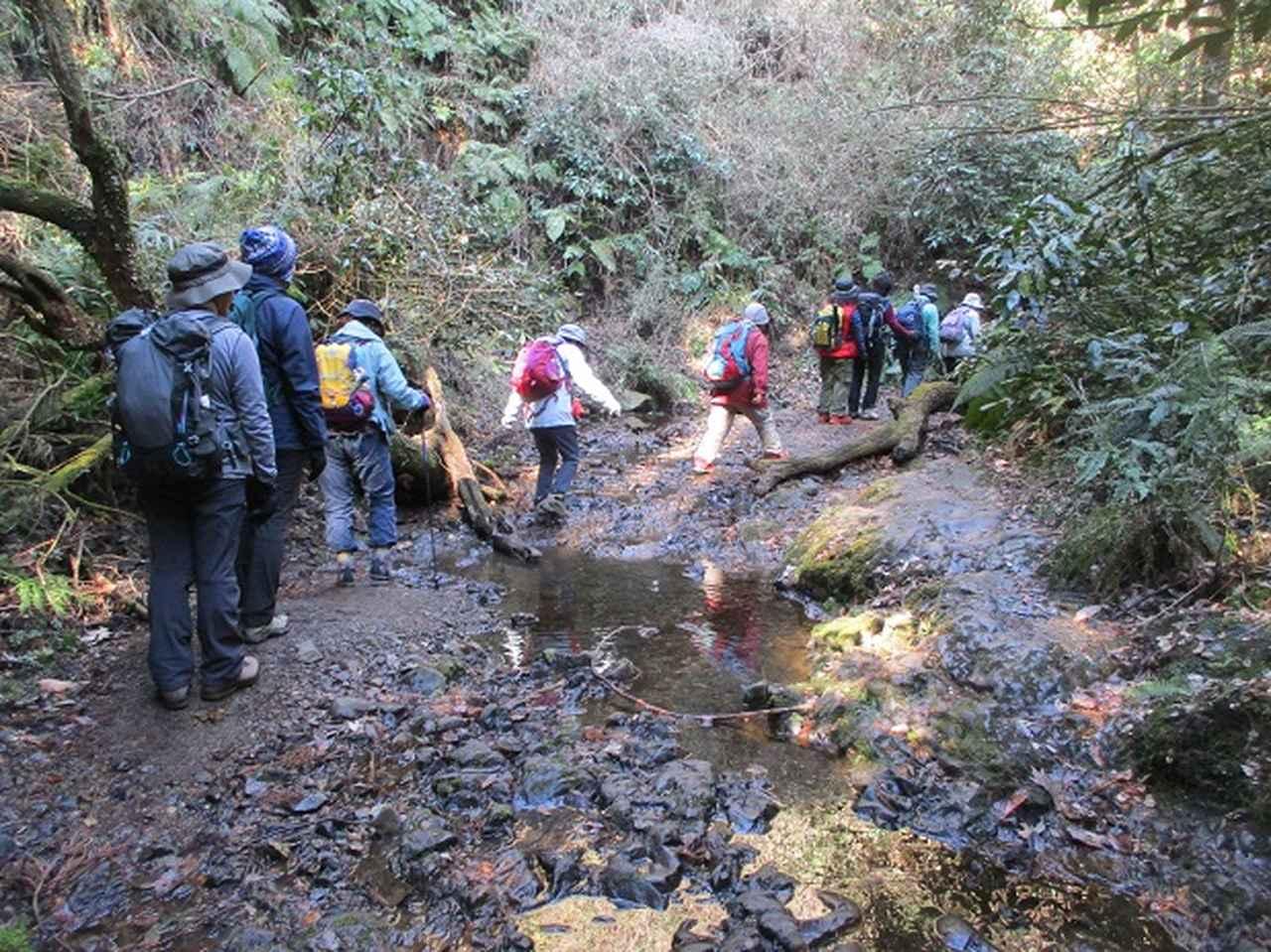 画像1: 2月2日、山旅会のツアーで 森戸川林道から二子山 にいってまいりました!