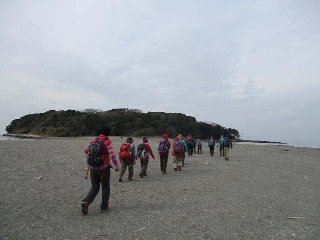 画像11: 新年山行で穂苅先生&岡田ガイドと千葉の 天神山と沖ノ島 へ♪