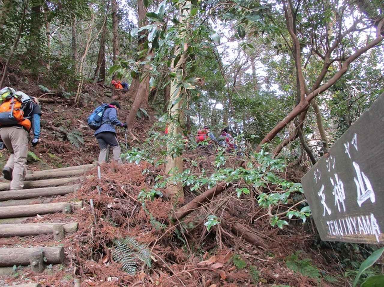 画像6: 新年山行で穂苅先生&岡田ガイドと千葉の 天神山と沖ノ島 へ♪