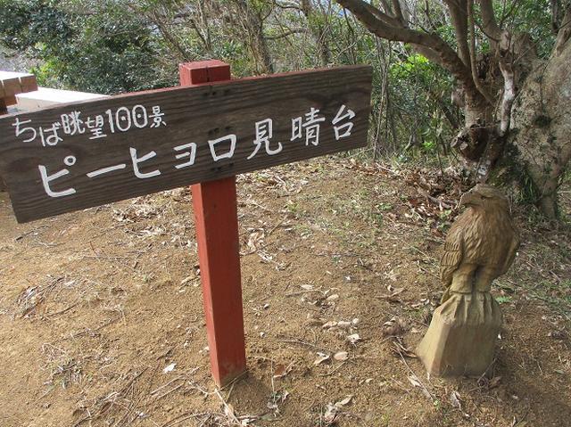 画像5: 新年山行で穂苅先生&岡田ガイドと千葉の 天神山と沖ノ島 へ♪
