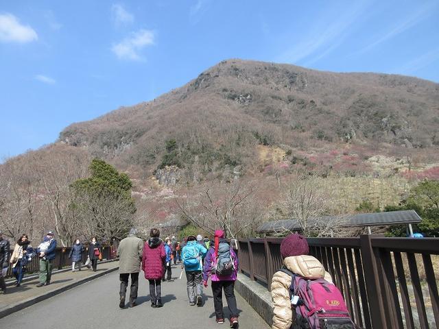 画像1: 山旅会ツアー3月までの催行状況のご報告です!