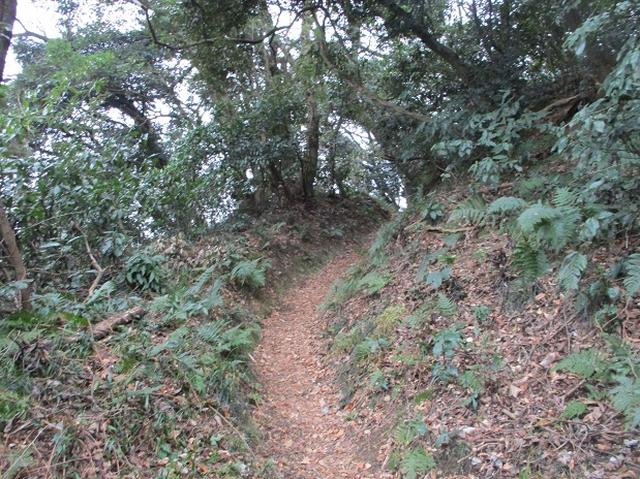 画像1: 2月16日・実施予定の山旅会 乳頭山から畠山 ツアーの下見へ!