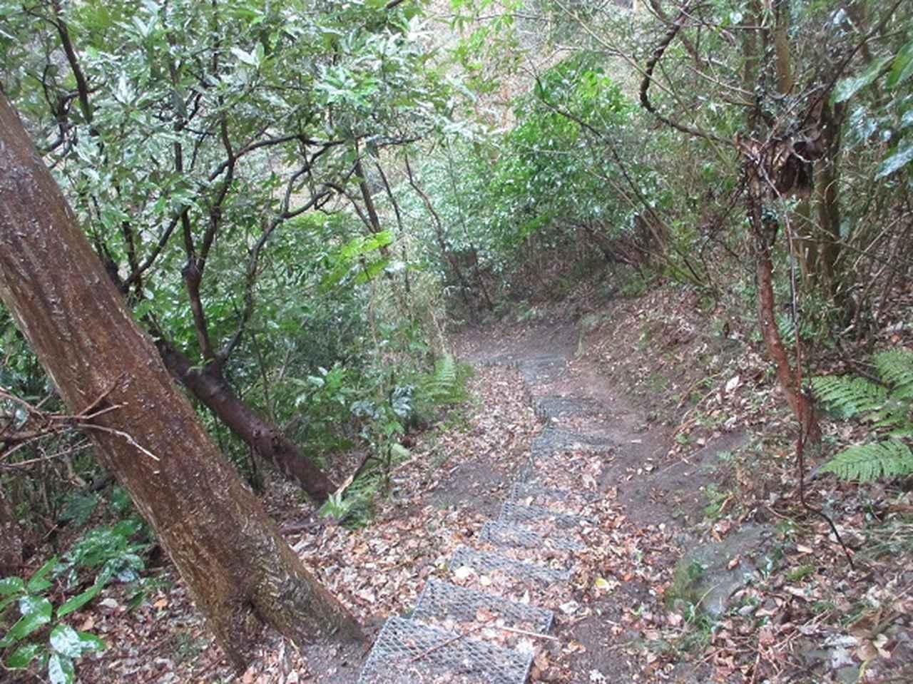 画像11: 2月16日・実施予定の山旅会 乳頭山から畠山 ツアーの下見へ!