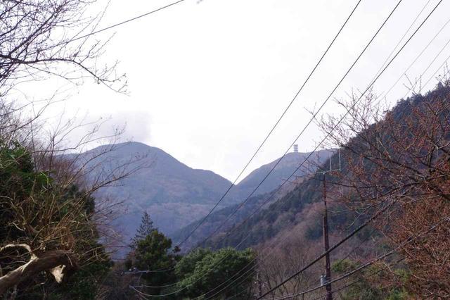 画像: しばらく歩くと箱根の山々が見えてきます。