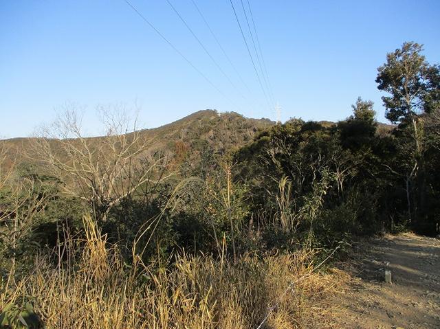 画像5: 来冬ツアーの素材を探して豊橋周辺の山を歩いてきました♪