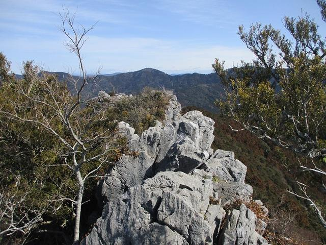 画像13: 来冬ツアーの素材を探して豊橋周辺の山を歩いてきました♪