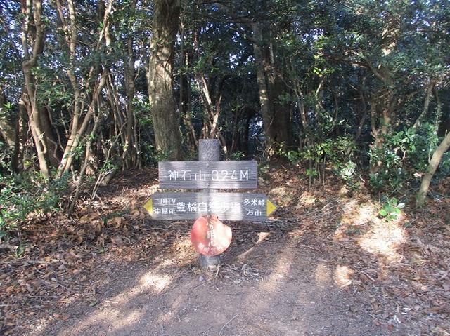 画像6: 来冬ツアーの素材を探して豊橋周辺の山を歩いてきました♪
