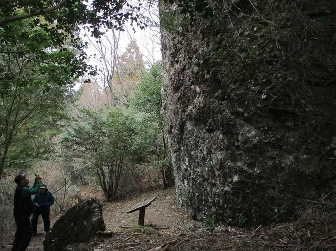 画像10: 1月8日に岡田ガイドと静岡県にたたずむ 石谷山 へ行って来ました♪