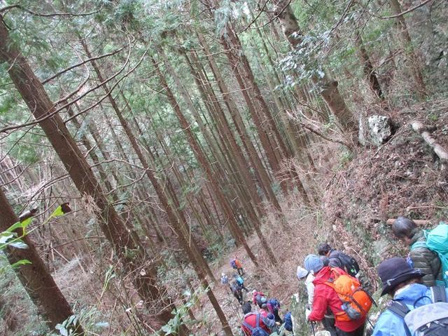 画像12: 1月8日に岡田ガイドと静岡県にたたずむ 石谷山 へ行って来ました♪