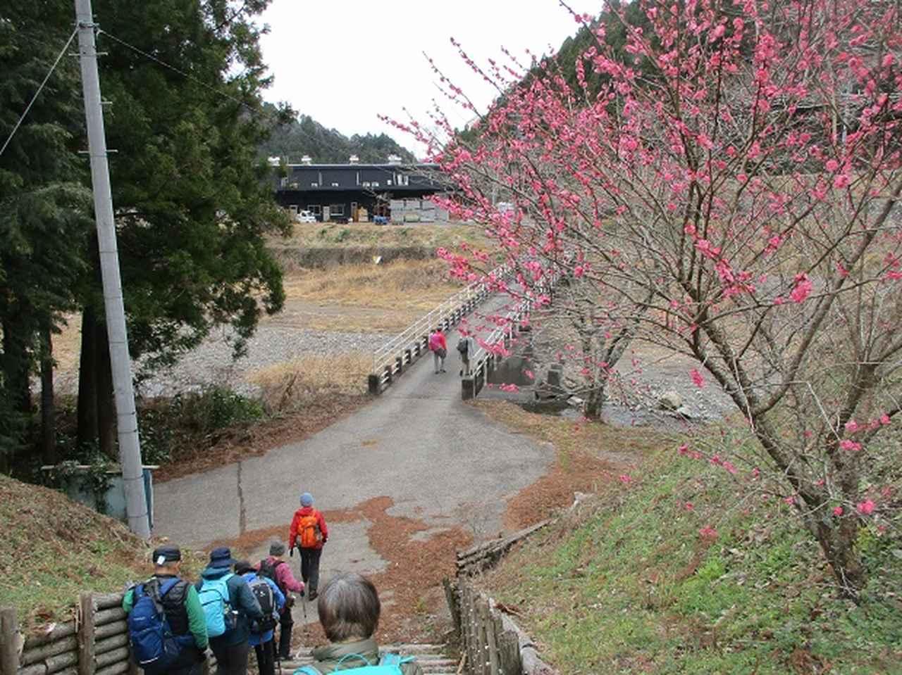 画像14: 1月8日に岡田ガイドと静岡県にたたずむ 石谷山 へ行って来ました♪
