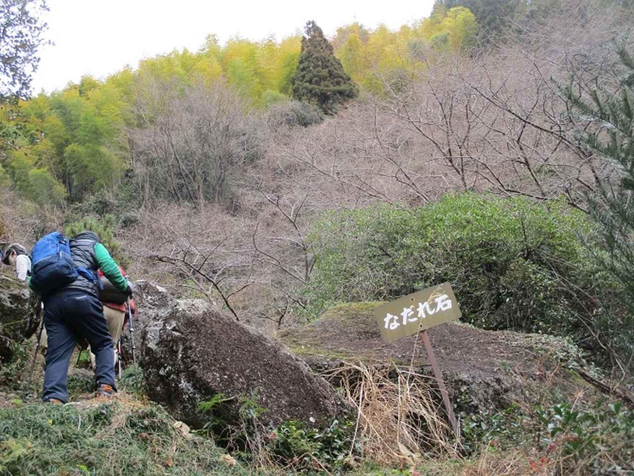 画像4: 1月8日に岡田ガイドと静岡県にたたずむ 石谷山 へ行って来ました♪