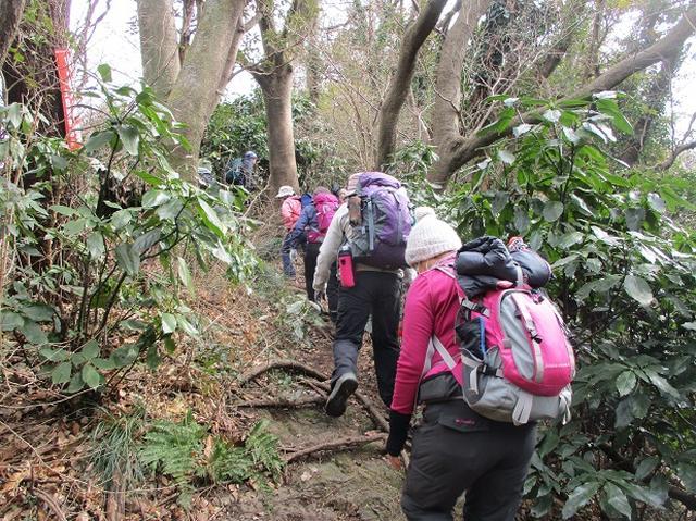 画像2: 2月16日に山旅会 「乳頭山から畠山」 ツアーに行ってきました!
