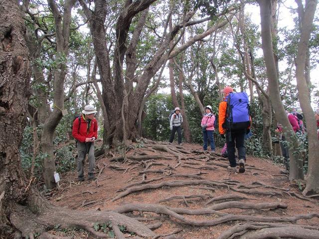 画像1: 2月16日に山旅会 「乳頭山から畠山」 ツアーに行ってきました!