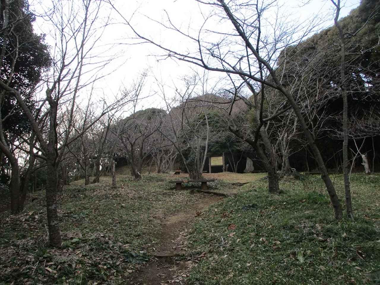 画像8: 3月の山旅会 大楠山から衣笠城跡 ツアーの下見に行ってきました!
