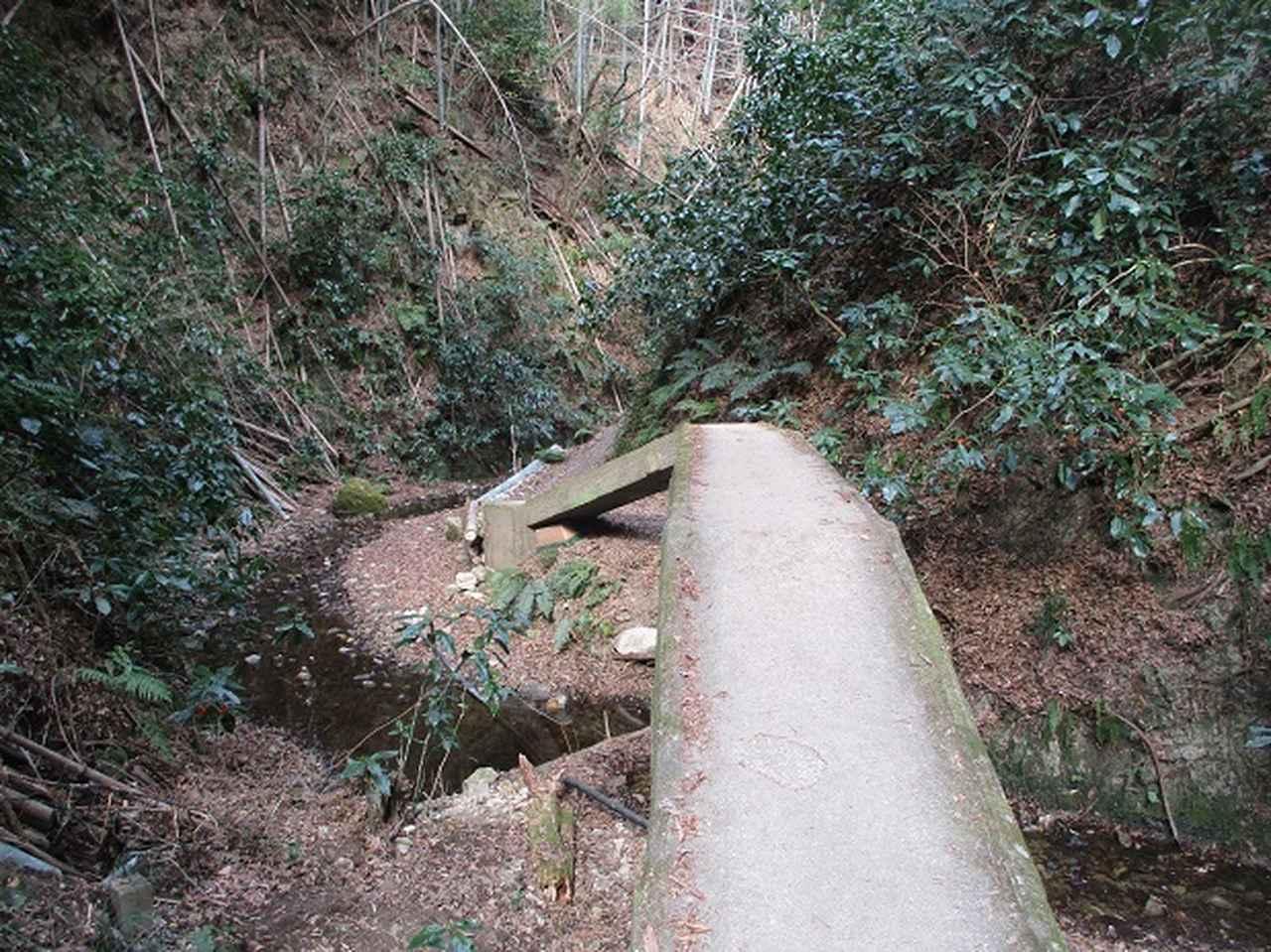 画像3: 3月の山旅会 大楠山から衣笠城跡 ツアーの下見に行ってきました!
