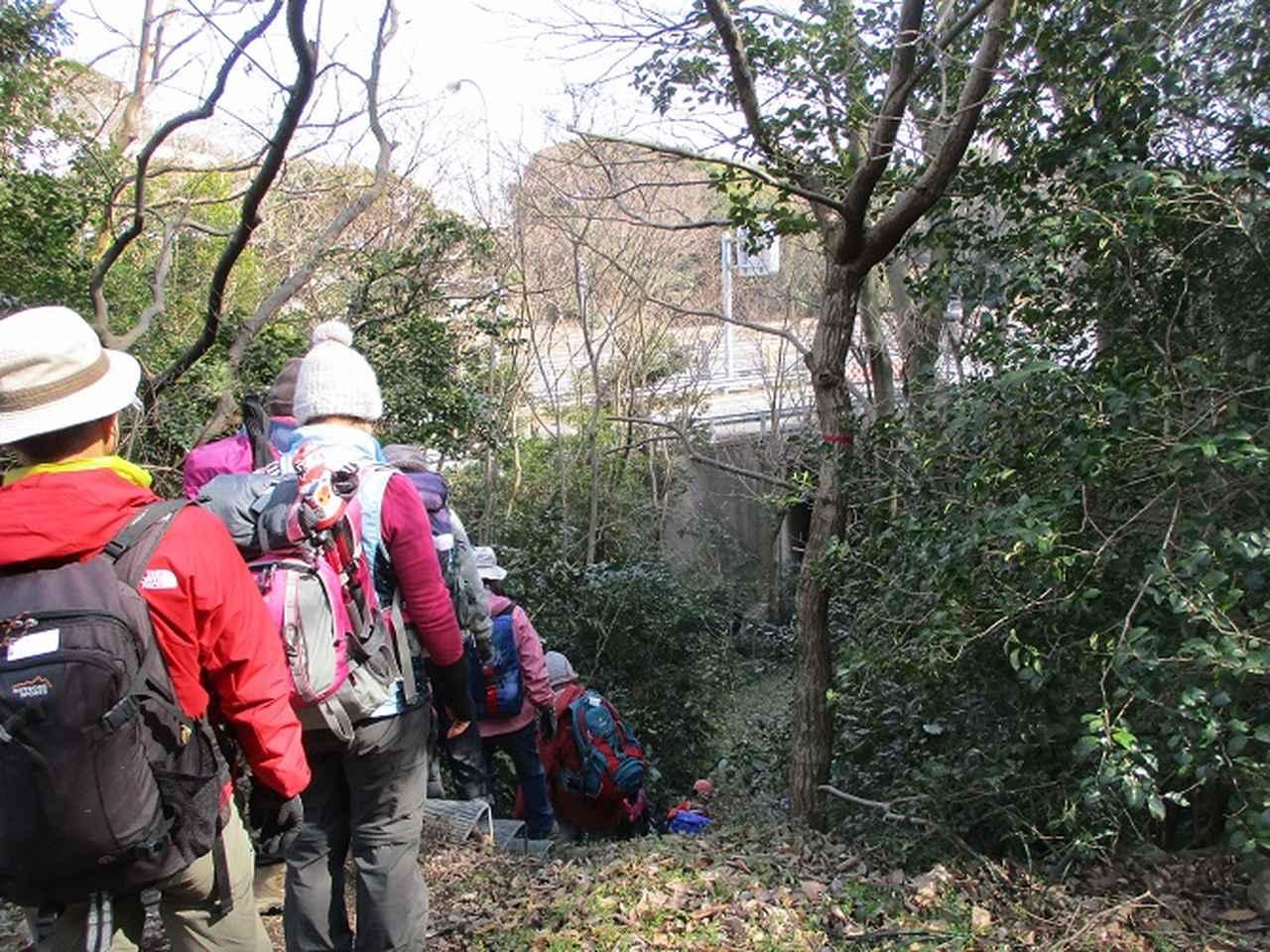 画像7: 2月16日に山旅会 「乳頭山から畠山」 ツアーに行ってきました!