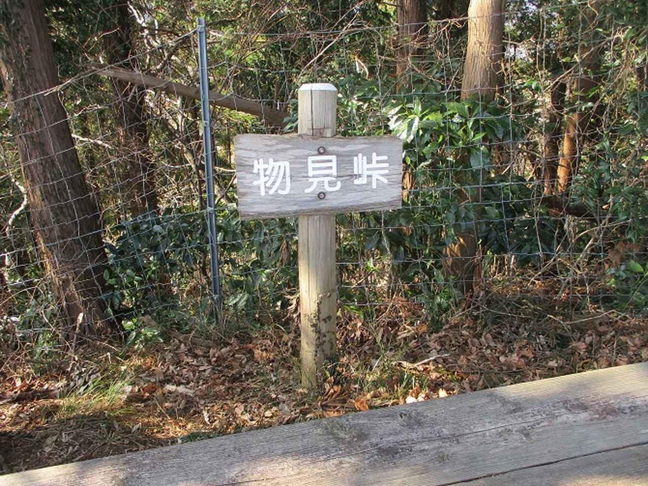 画像5: 2月18日に山旅会 「丹沢白山」 ツアーに行ってきました!