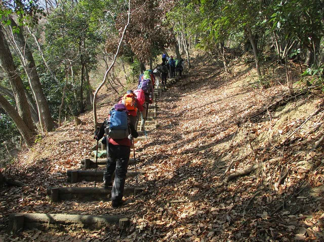 画像3: 2月18日に山旅会 「丹沢白山」 ツアーに行ってきました!