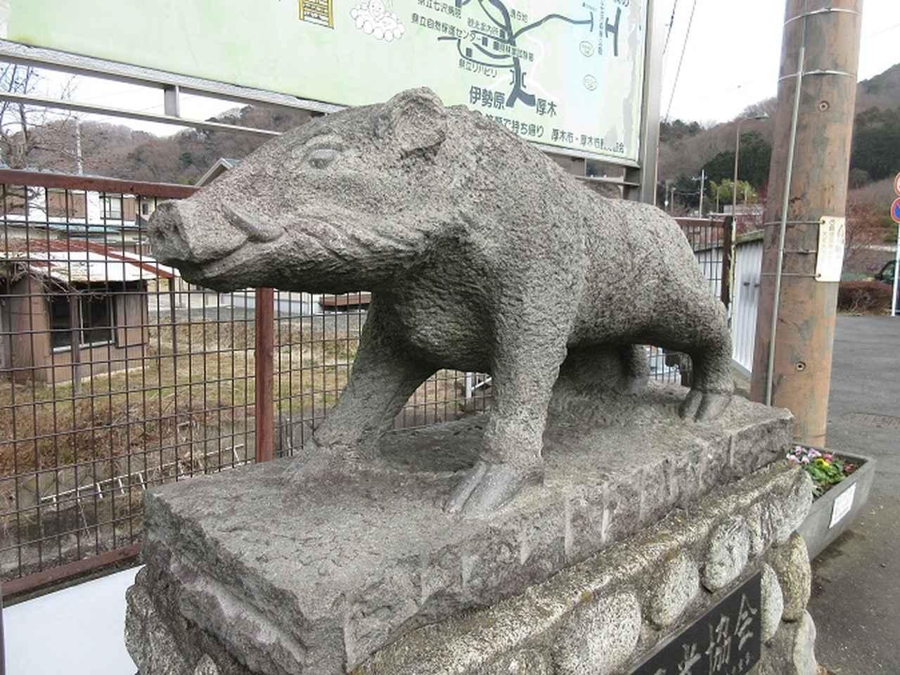画像11: 2月18日に山旅会 「丹沢白山」 ツアーに行ってきました!