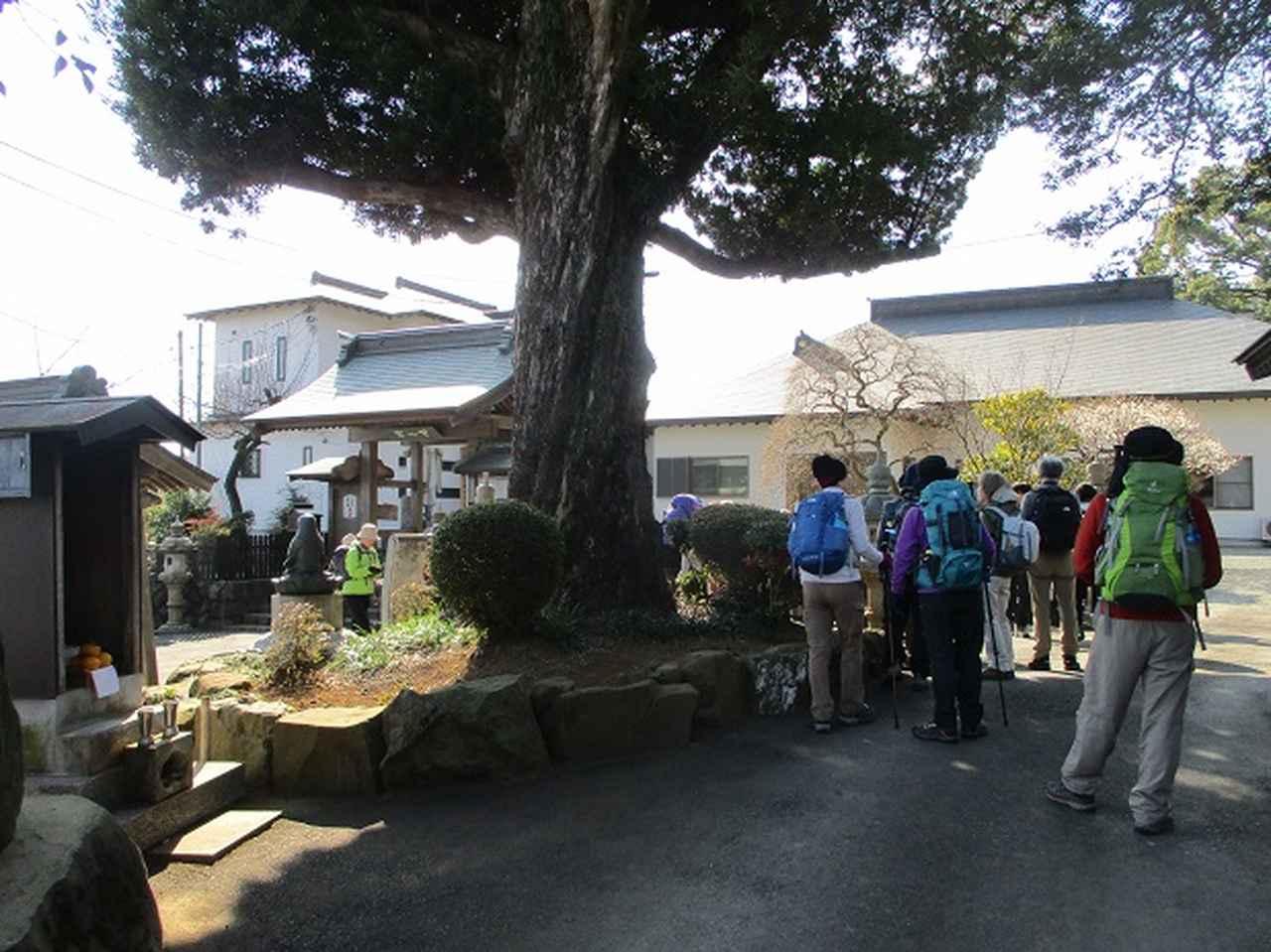 画像1: 2月18日に山旅会 「丹沢白山」 ツアーに行ってきました!
