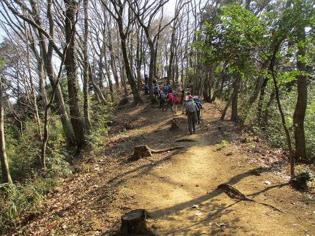 画像9: 2月18日に山旅会 「丹沢白山」 ツアーに行ってきました!