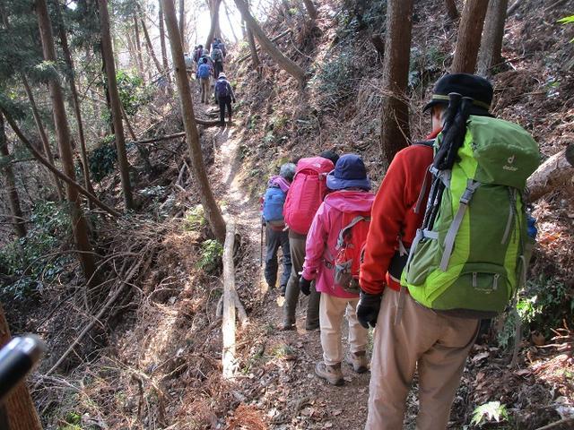 画像8: 2月18日に山旅会 「丹沢白山」 ツアーに行ってきました!