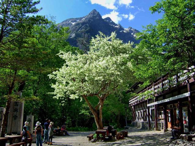 画像: 明神館と明神岳