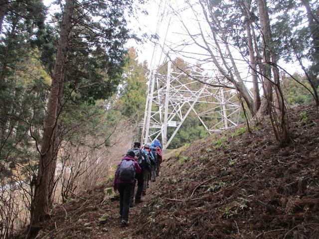 画像4: 2月19日に山旅会 「シダンゴ山」 ツアーに行ってきました!
