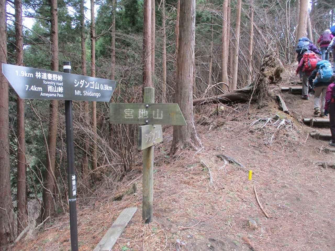 画像5: 2月19日に山旅会 「シダンゴ山」 ツアーに行ってきました!