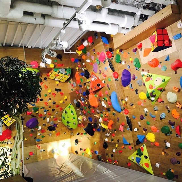 画像: VILLARS Climbing 有明店の内装