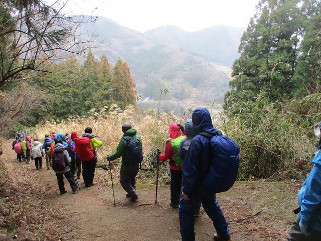 画像7: 2月19日に山旅会 「シダンゴ山」 ツアーに行ってきました!
