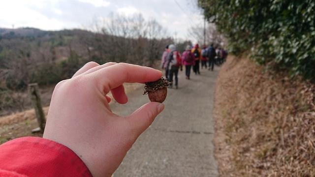 画像4: 2月17日に佐藤威行ガイドのツアーで曽我山へいってきました♪