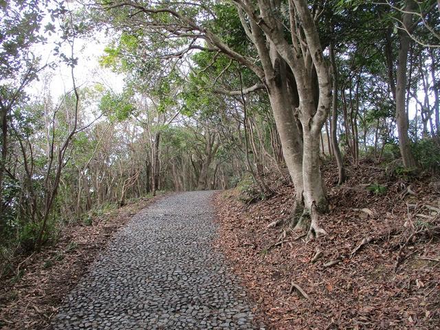 画像3: 3月の山旅会 「横山と朝熊ヶ岳」 の下見にいってきました!