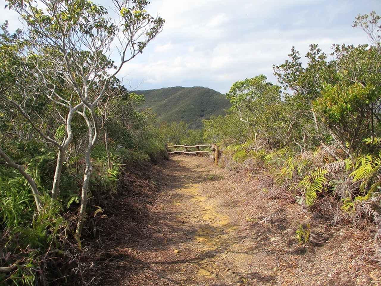 画像8: 3月の山旅会 「横山と朝熊ヶ岳」 の下見にいってきました!