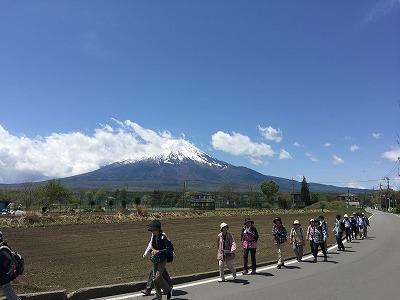 画像: 【現地集合】2019年4月スタート富士山すそ野ぐるり一周ウォーク|クラブツーリズム