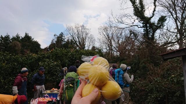 画像14: 2月17日に佐藤威行ガイドのツアーで曽我山へいってきました♪
