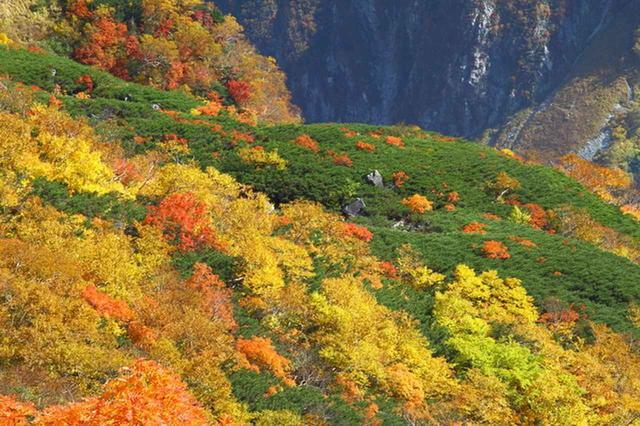 画像: カール上部から見下ろす紅葉
