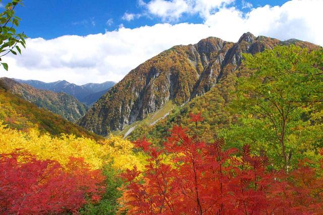 画像: 屏風岩も紅葉に染まります