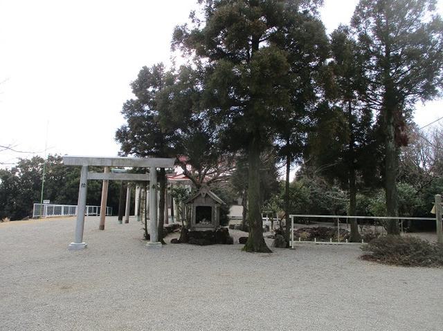 画像4: 3月の 「横山と朝熊ヶ岳」 ツアーの下見に行ってきました!