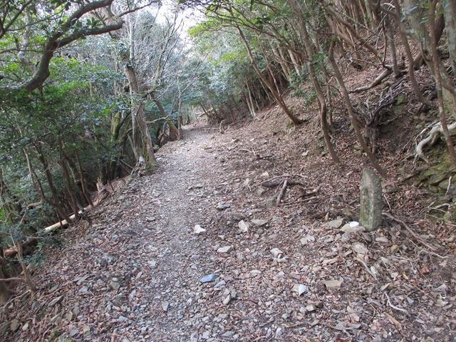 画像8: 3月の 「横山と朝熊ヶ岳」 ツアーの下見に行ってきました!