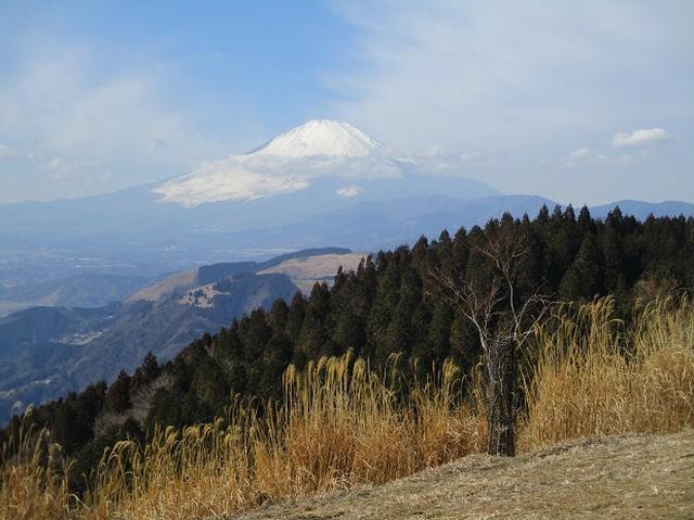 画像5: 3月の山旅会・現地集合 「高松山」 ツアーの下見に行ってきました!