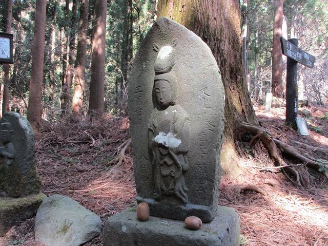 画像8: 3月の山旅会・現地集合 「高松山」 ツアーの下見に行ってきました!