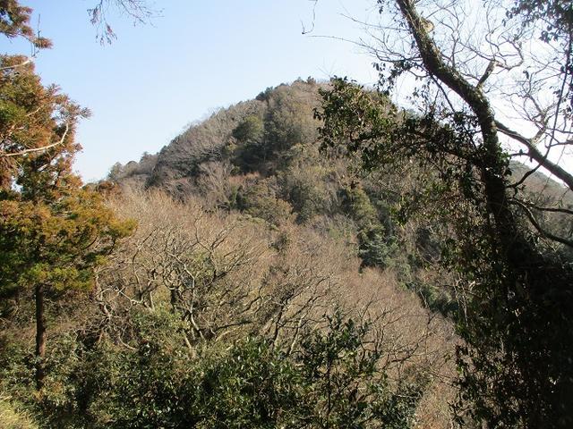 画像2: 2月23日に 山旅会 「仙元山から茅塚」 ツアーに行ってきました!