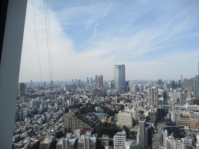 画像10: 【山旅会・登山ガイドこだわりツアー】岡田ガイドからの便り・都内の山ツアーに行ってきました!