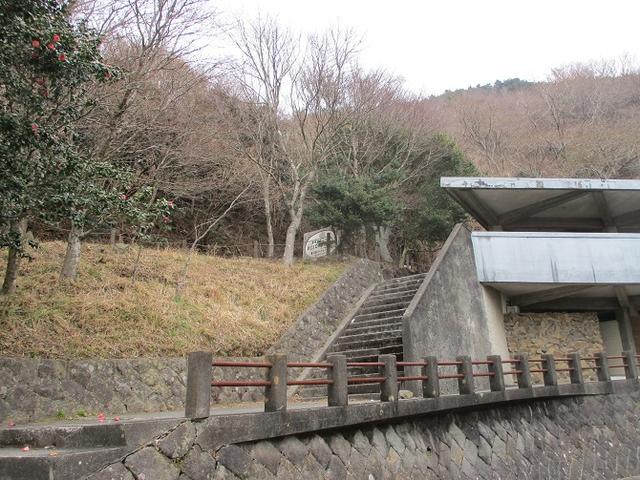 画像6: 来年の冬の企画素材を探しに、湯河原の城山に行ってきました!