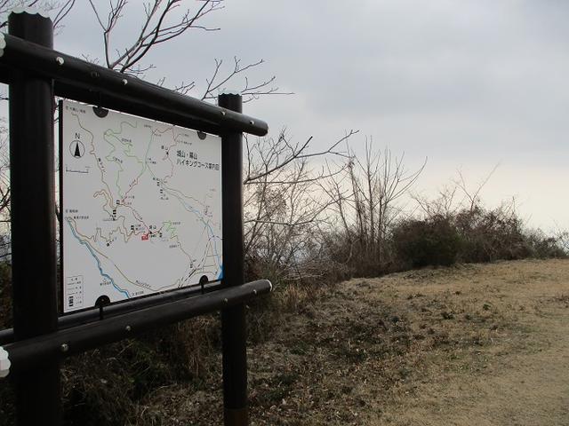 画像8: 来年の冬の企画素材を探しに、湯河原の城山に行ってきました!