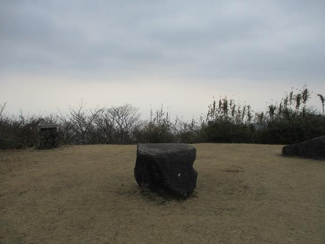 画像9: 来年の冬の企画素材を探しに、湯河原の城山に行ってきました!