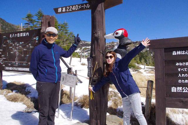 画像: ロープウェイの山頂駅から少し歩いて、標高2,240m地点からスタート!