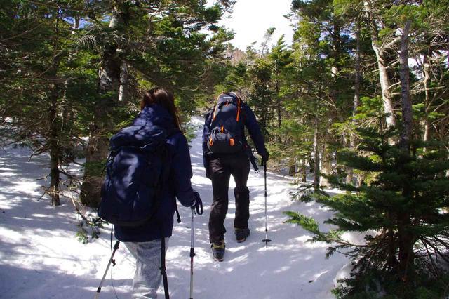 画像: 山頂に近づくと斜面が急になります